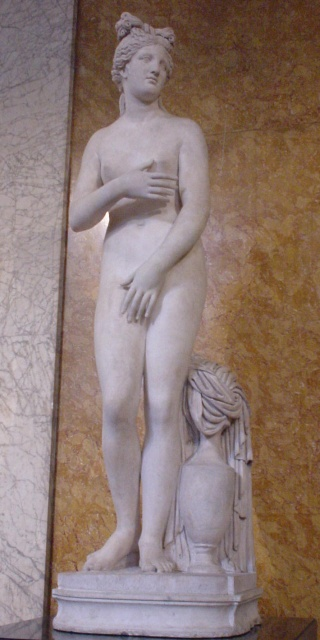 Venus Campo Iemini