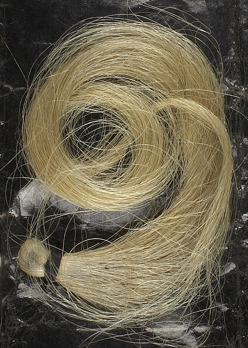 Thorvaldsens hår