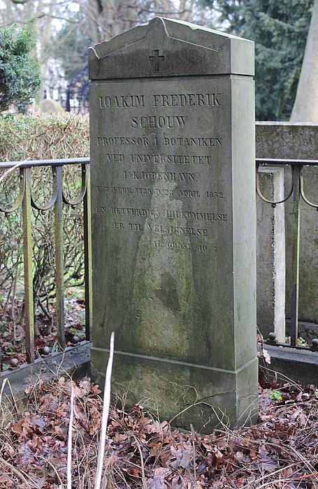 J.F. Schouw, gravmæle