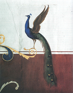Rum 33 påfugl