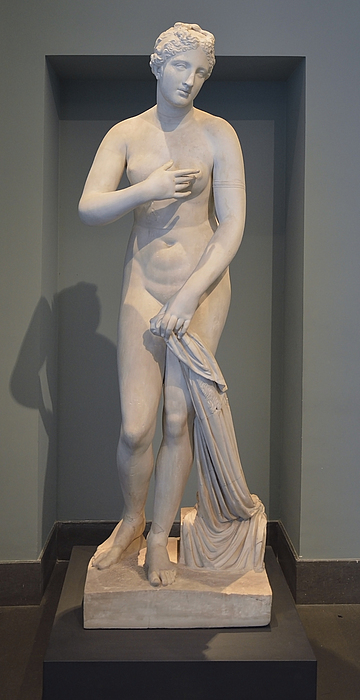 Venus Menophantos