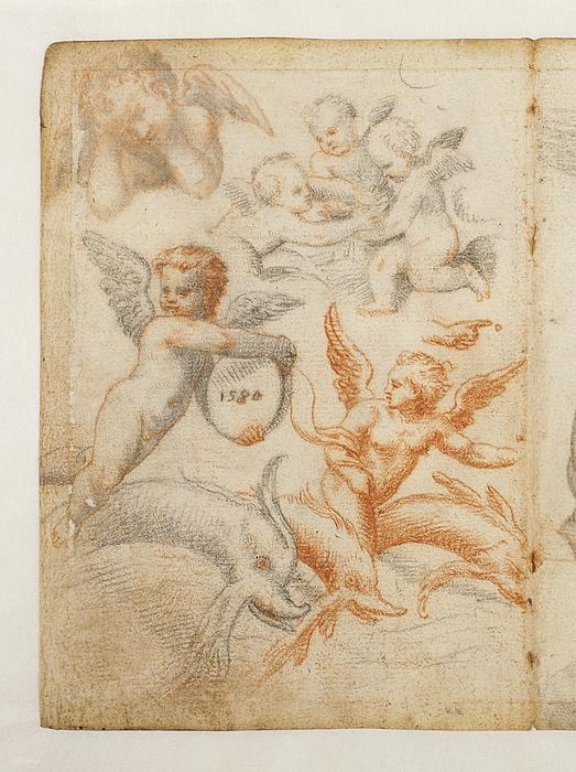 Engel, amoriner og delfiner