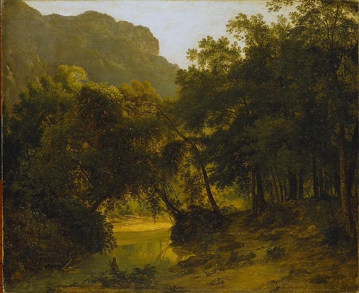 Skovparti ved en bæk