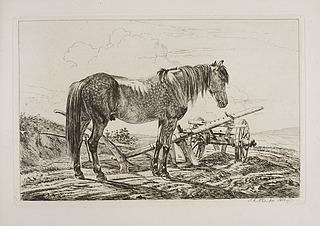 Hest ved en plov