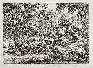 Skovparti med knækket eg