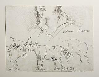 Dyrestudier. Portræt af Bartolomeo Pinelli