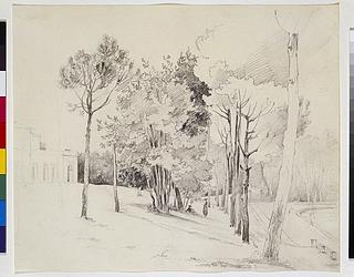 Træer i Villa Borgheses have