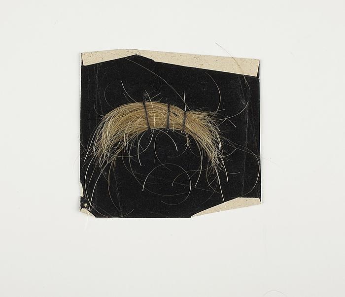 Lok af Thorvaldsens hår