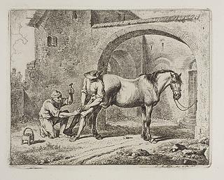 Hest skos