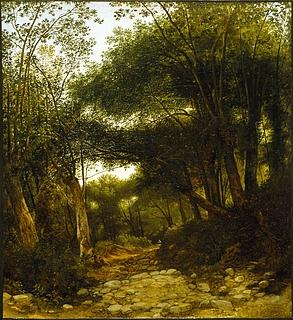 En skovvej