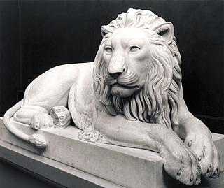 Liggende løve