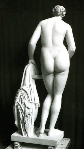 Venus Colonna, bagfra
