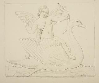 Amor på en svane