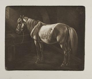 Hest ved krybben