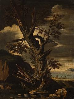 Et træ ramt af lynet