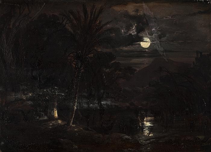 Tropisk landskab (Syd Amerika?) i måneskin