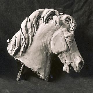 Hestehoved og kriger