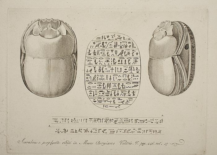 Skarabæ. Skarabæens inskriptioner