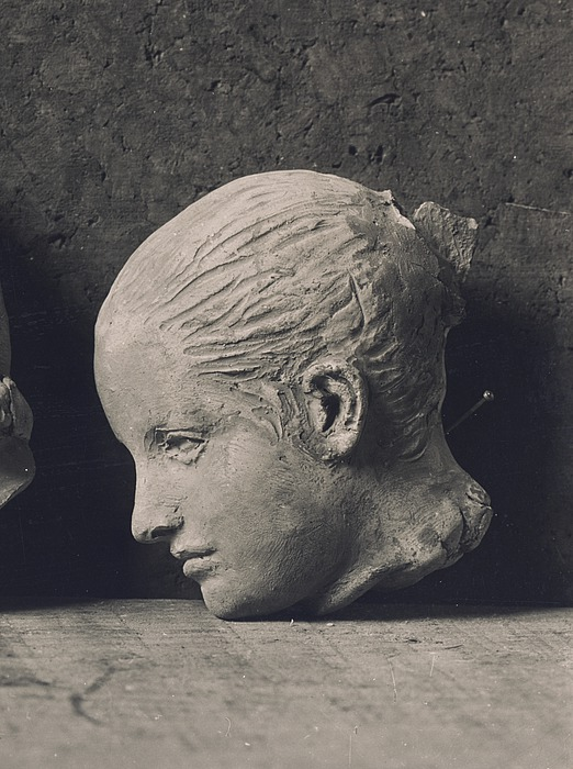 Hovedet af Elisa Stampe
