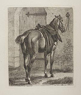 Hest bundet til en væg