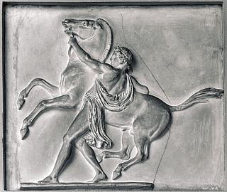 Ung mand med stejlende hest