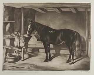 Hest i en stald