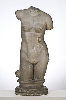 Kvinde torso