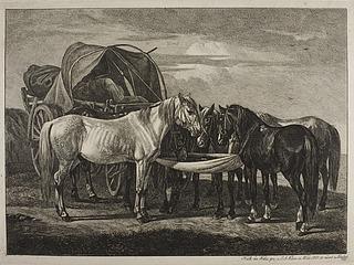 Heste ved en ungarsk vogn
