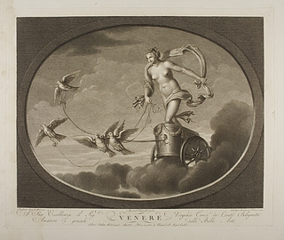 Venere ( Venus )