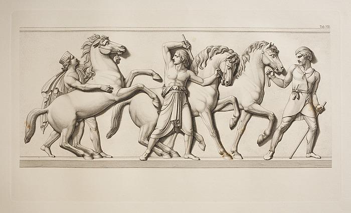 Tre heste fra Persien