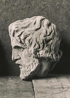 Hovedet af skægget mand