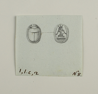 Skarabæ fra ryg og bug